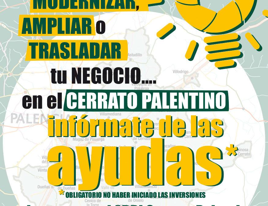 Ayudas y subvenciones respecto al Covid19 resumen ADRI Cerrato Palentino